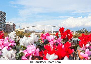 Valencia puente de Exposicion from city flowers bridge