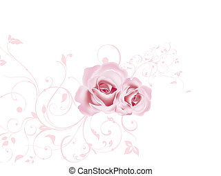 valentijn, roos