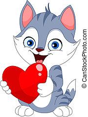 valentin, chat