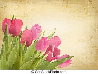 valentin nap, háttér., gyönyörű, tulipán, menstruáció, képben látható, szüret, texture., vektor