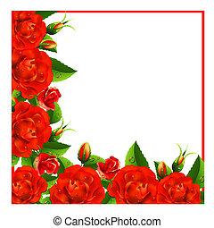 valentine, fundo, com, rosas
