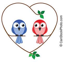 girl and boy birds