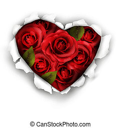 Valentine Heart Card Design. Red roses and ripped paper heart. Vector illustration.