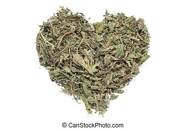 Valentine heart of dried nettle on white background