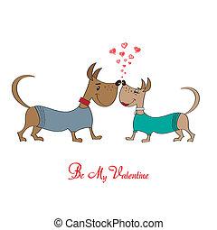 Buscar pareja chihuahua