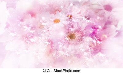 Valentine Video Background Loop_09_Pink Rose Petal