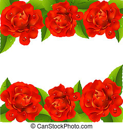 Valentine`s day card with roses