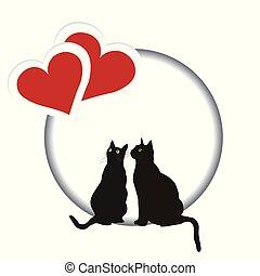valentines, due, gatti, cuori, giorno, scheda