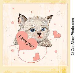 valentines nap, köszönés kártya, noha, cica, és, piros