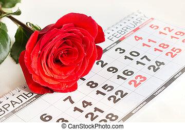 valentino, card., rosas rojas, colocar, en, el, fecha calendario, de, february 14, valentino, day., cierre, arriba.