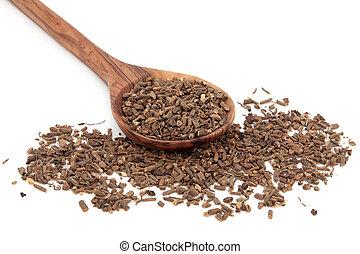Valerain Herb - Valerian herb root in an olive wood spoon...