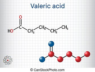 Valeric acid, pentanoic acid or valerate molecule. Structural chemical formula and molecule model. Sheet of paper in a cage. Vector illustration