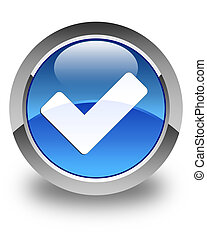 Validate icon glossy blue round button