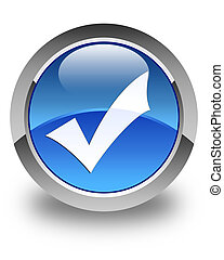 Validation icon glossy blue round button