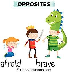 valiente, palabras, contrario, asustado
