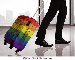 valise, à, lgbt, modèle drapeau