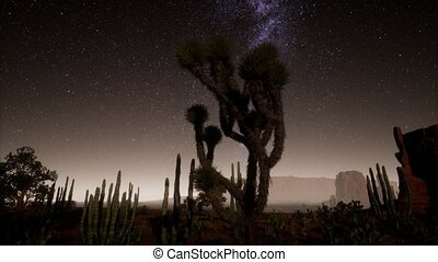 vallée, parc national, désert, étoiles, sous, éclairé par la...
