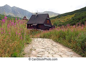 vallée, pologne, gasienicowa, tatra, montagnes