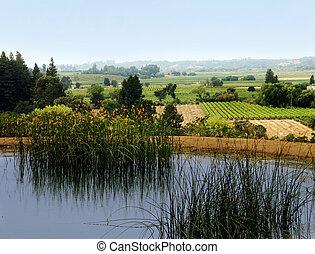 vallée sonoma