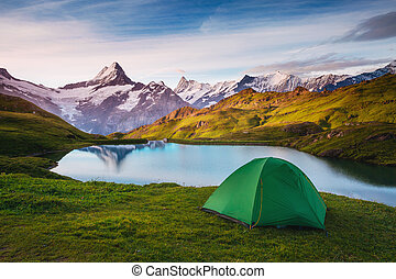 vallée, suisse, emplacement, alpes, alpin, grindelwald., sunlight., bachalpsee, incandescent