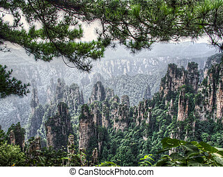 vallée, zhangjiajie