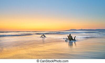 vallarta, puerto, plage, coucher soleil, mexique