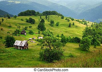 valle de montaña, y, casa de madera