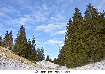 valle montagna, stagione, primavera