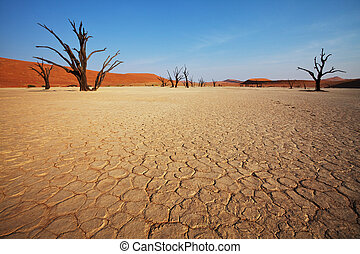valle, namibia, muerto