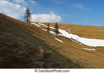 valle, primavera, montagna