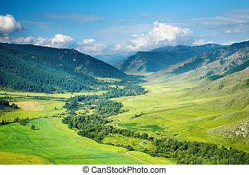 valle, verde
