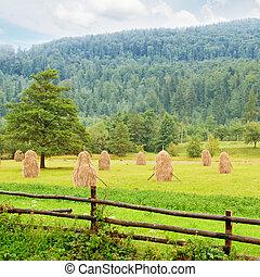 vallei, berg, haystacks