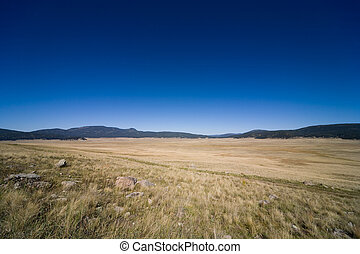 Valles Caldera National Preserve near Los Alamos in New Mexico, USA