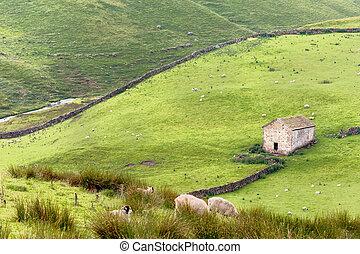 valles, yorkshire, granero
