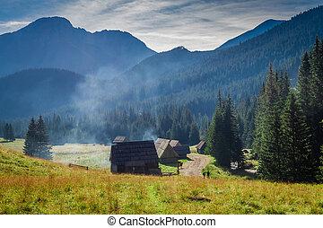 Valley Chocholowska at sunrise, Tatra Mountains in Poland, Europe