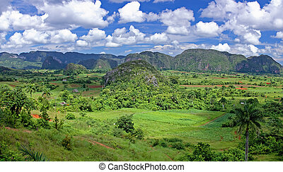 valley in Cuba - The valley of Vinales in Cuba. This is an...