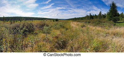Valley with trees and hills in South Yakutia in good weather