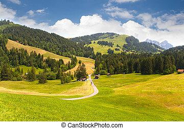 Valley in Switzerland - Beautiful valley in Sattel near Lake...