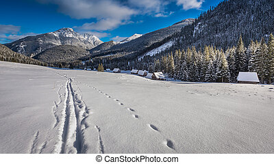 Valley in Tatras Mountains at sunrise in the winter
