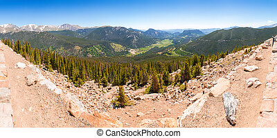 Valley landscape with green forest in usa.