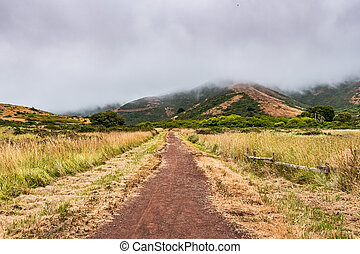 Valley road in Marin Headlands area on a foggy summer day, ...