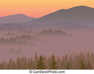 Valley with coniferous wood.