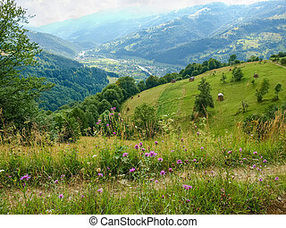 Valley with mountain village in the Carpathian Mountains