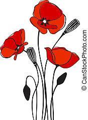 vallmo, bakgrund, blommig