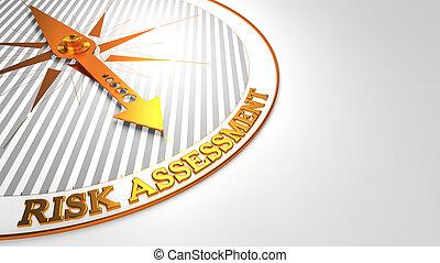 valoración de riesgo, blanco, con, dorado, compass.