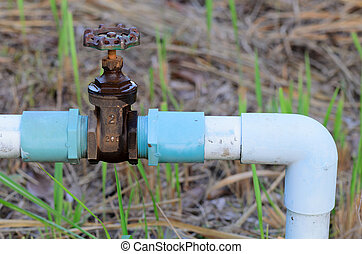 Valve and water pipe in garden