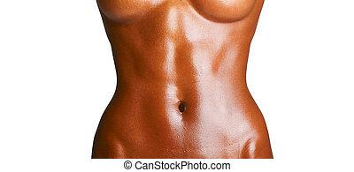 van een vrouw, torso