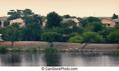 Van Passes Shanty Houses By River - Minivan on road in...