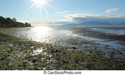 Vancouver Beach. - View from beach near Northwest Marine...