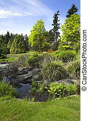 vancouver, giardino
